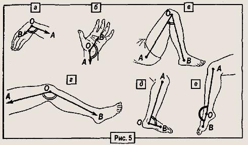 массаж при шейном остеохондрозе фото.